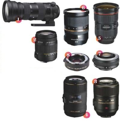Lens-Wildlife-Photography Picking the Right Glass for Wildlife Photography