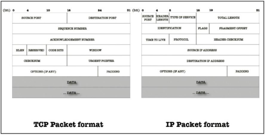 Format-of-TCP-and-IP-Segment Wireshark Tutorial to Analyse traffic