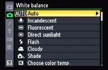 White-Balance-Auto-1 Optimal Camera Settings For Wildlife Photography